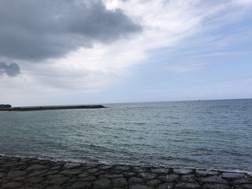 blog-498南浜公園-1.jpg